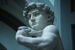 MICHELANGELO David Accademia -A¦é-« David Bickerstaff
